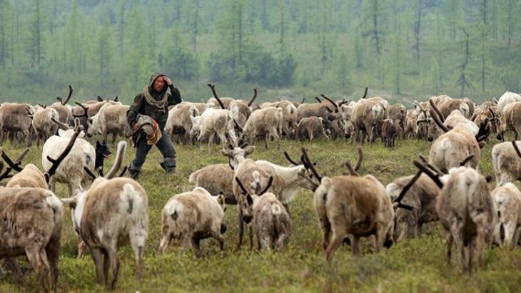 Власти Ямала и сберегательный банк заключили соглашение осотрудничестве