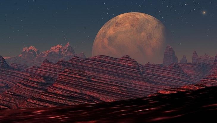 Марсоход Curiosity заснял останки живых существ