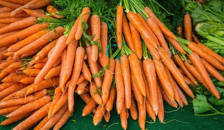 Неурожай заставил Украинское государство закупать морковь вевропейских странах