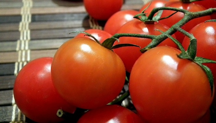 Турецкие помидоры могут вернуться вРФ не ранее зимы— Минсельхоз