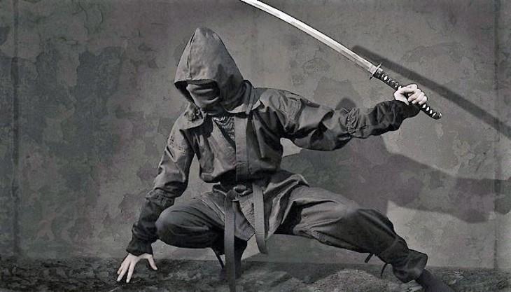 Япония: Вором-«ниндзя» оказался мужчина 74 лет