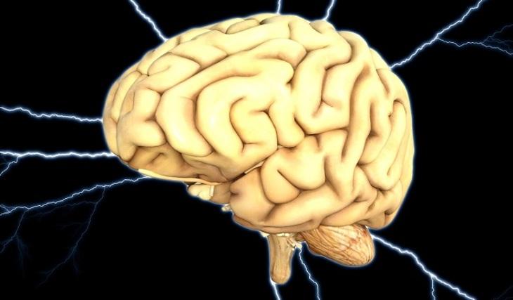 Найдена связь между совершением преступлений и повреждениями мозга