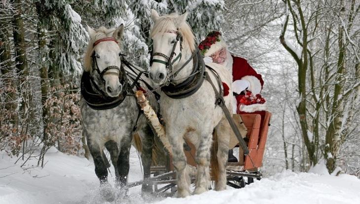 В «Почте Деда Мороза» поведали о необыкновенных просьбах детей— Крылья ихвост