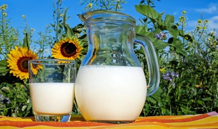 Человечество не выживет без молока
