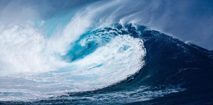Купание в океанской воде опасно для человека