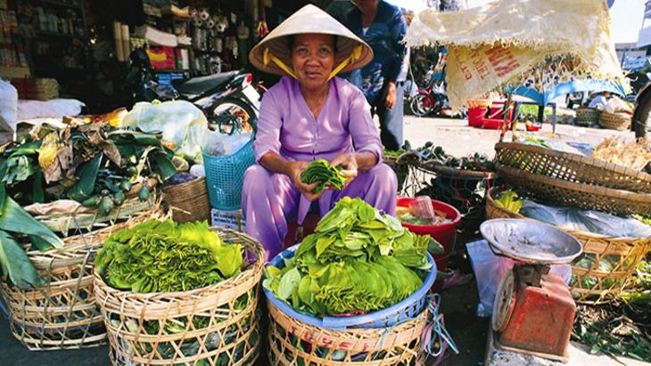 Питание во вьетнаме отзывы туристов
