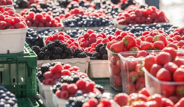 Парадоксы фруктового изобилия