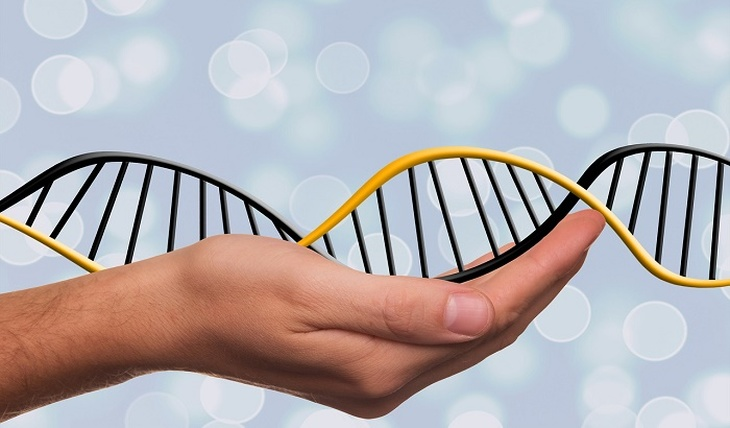 The riddle of changes in human DNA - photo
