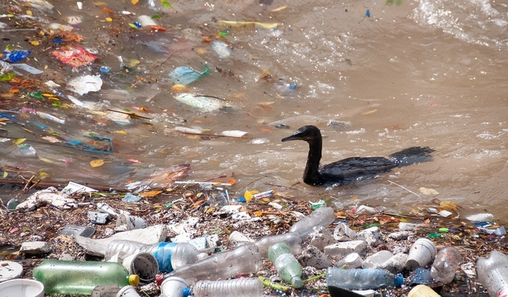 Plastic - a threat to life - photo