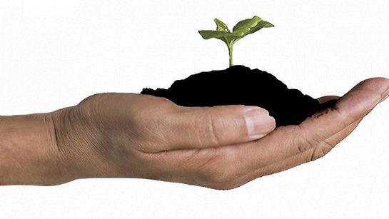 Будет почва непорочна